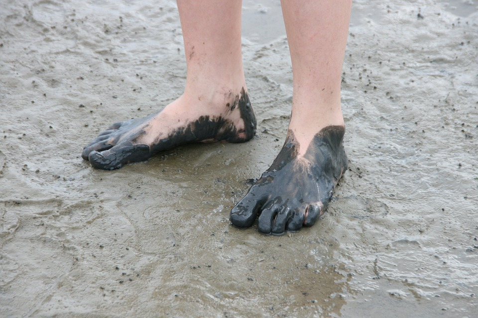 Watt Feet, Watts, Wadden Sea, North Sea