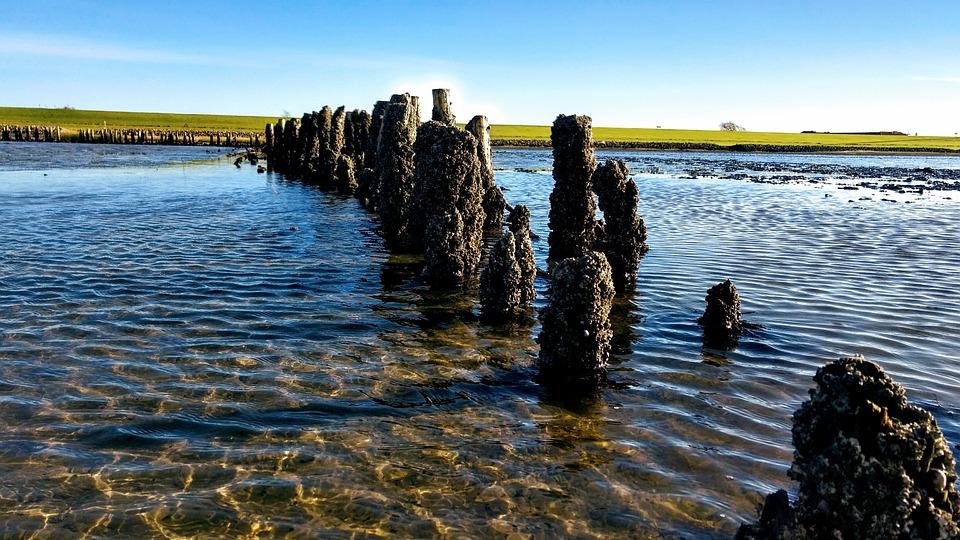 North Sea, Watts, Wadden Sea, Landscape, Water, Sea