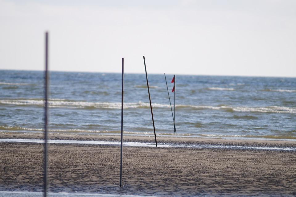 Beach, Sea, Wave, Holiday, Coast, Empty Beach, Blue