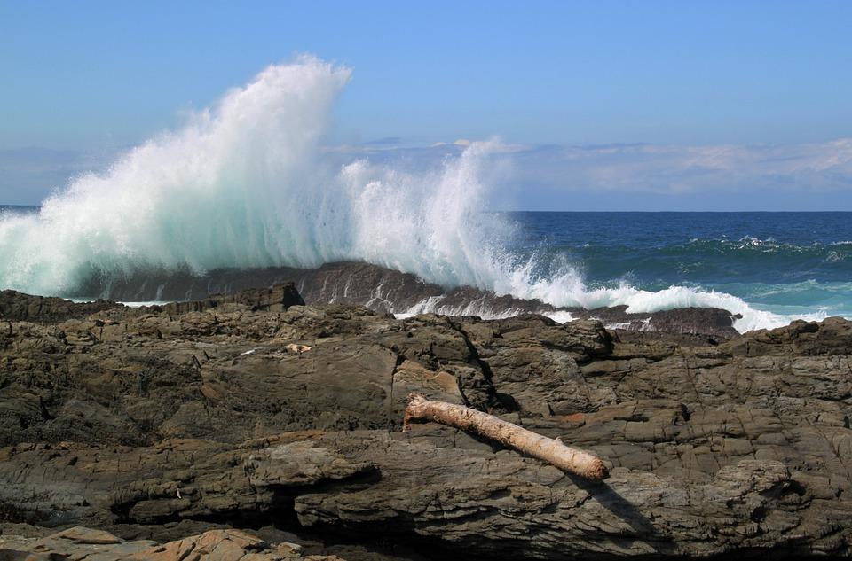 Wave, Sea, Water, Bank, Coast, Stone Coast, Rock, Surf