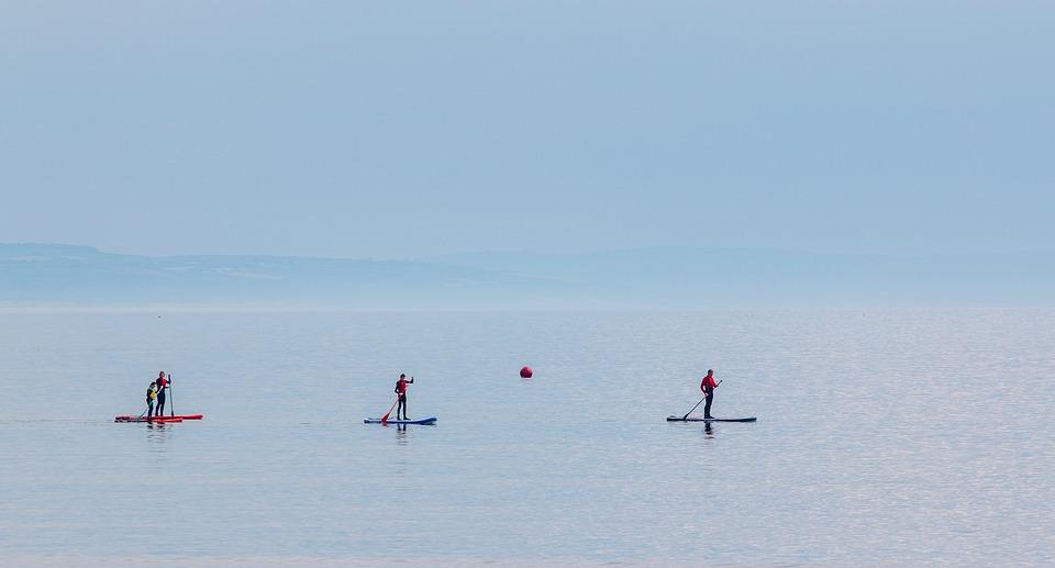 Board, Sea, Waves, Ocean, Coast, Beach, Water, Sport