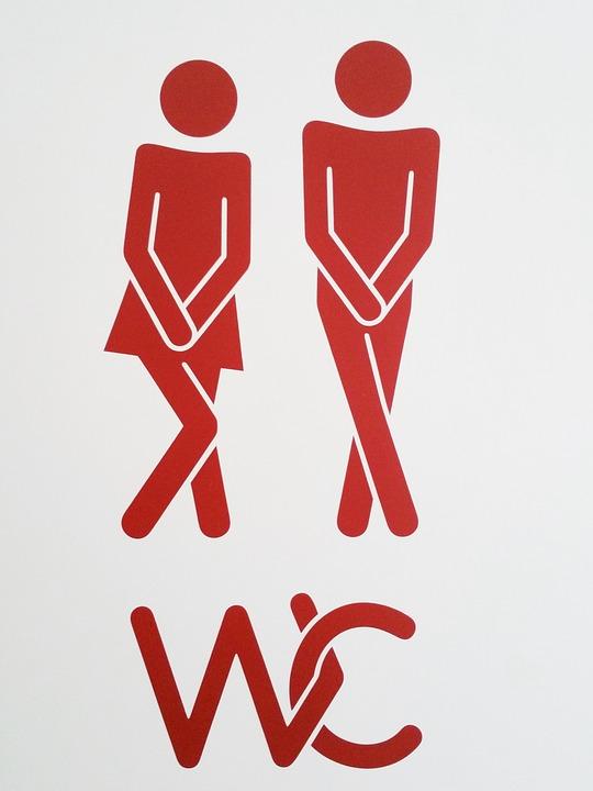 Pair Wc Toilet Man Woman Characters