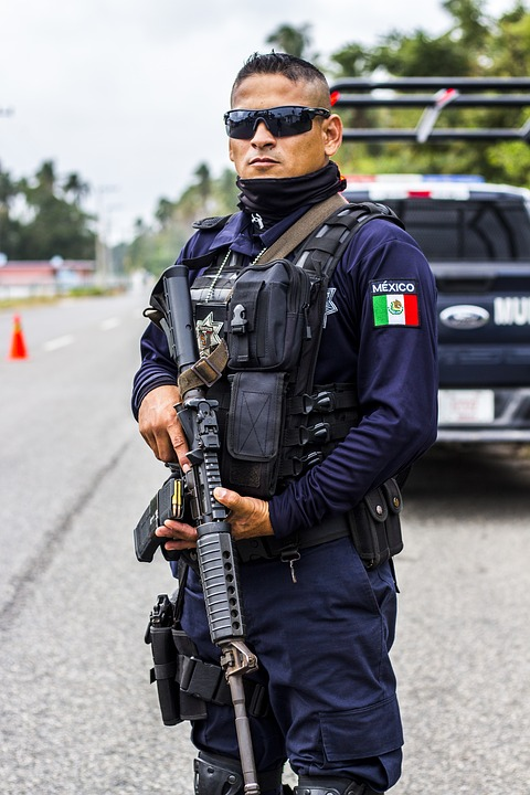 Security, Police, Weapon, Federal, Gun, Military