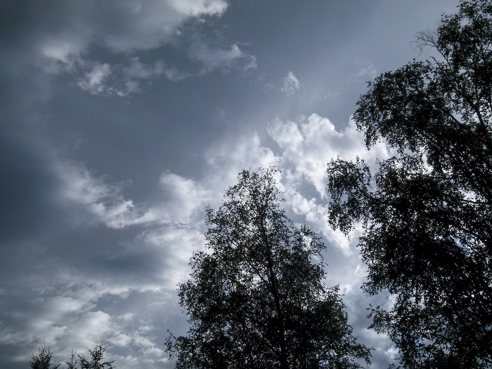Thunderstorm, Weather, Dark Sky, Clouds, Trees, Forest