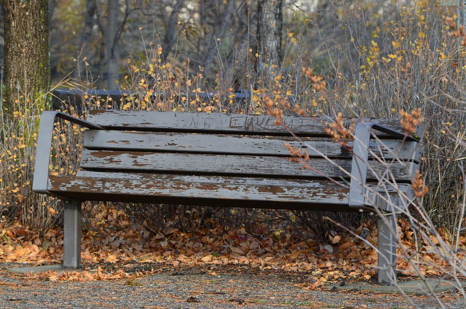 Bench, Rustic, Weathered, Nature, Park, Seating, Wooden