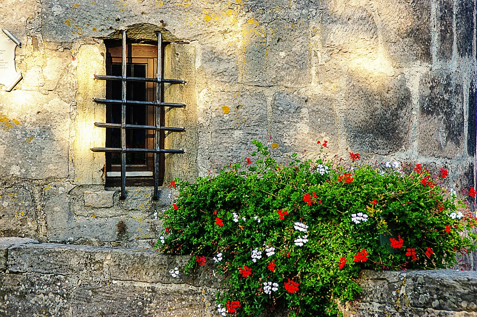 Window, Grate, Wall, Weathered, Flowers, Hauswand