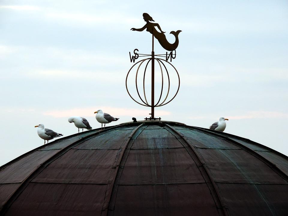 Weathervane, Roof, Gulls, More Virgin, Mermaid, Sky