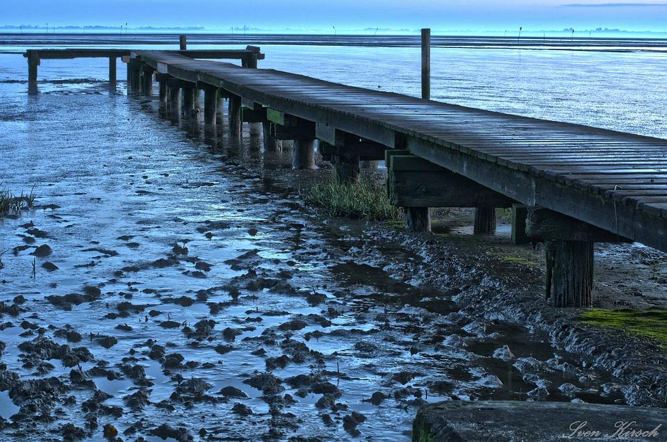Dangast, Web, North Sea, Ebb, Wadden Sea, Landscape