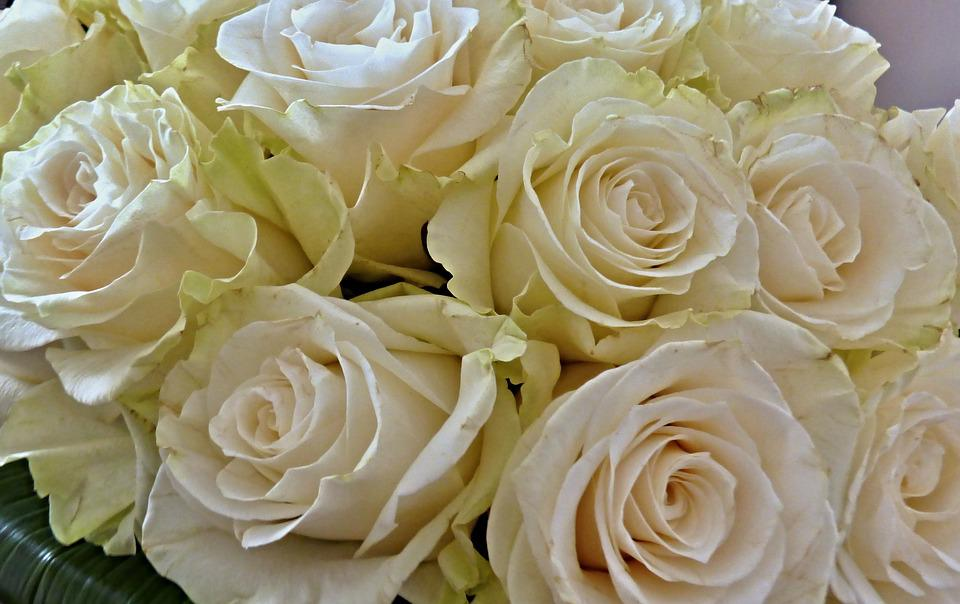 Free photo wedding bouquet white roses flowers rose max pixel rose bouquet flowers wedding white roses mightylinksfo