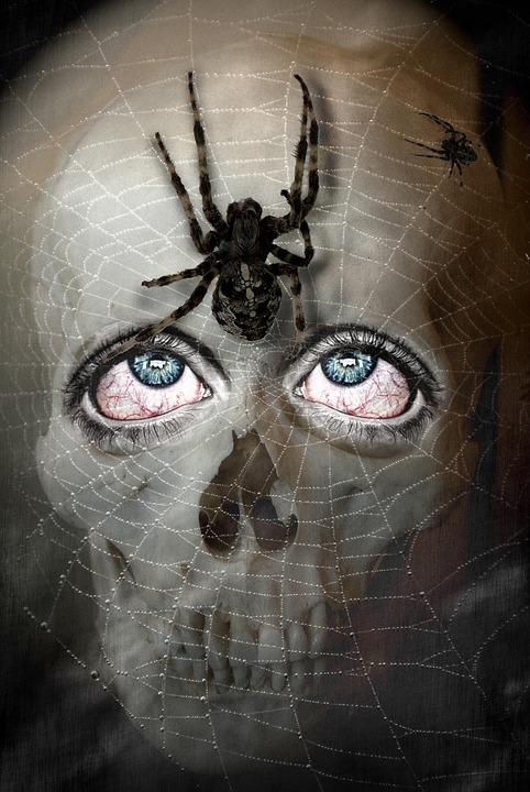 Skull, Skull And Crossbones, Spin, Weird, Horror