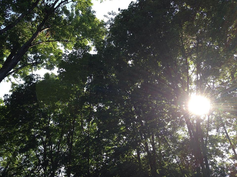 Sun, Healing, Health, Wellbeing, Spiritual, Spirit