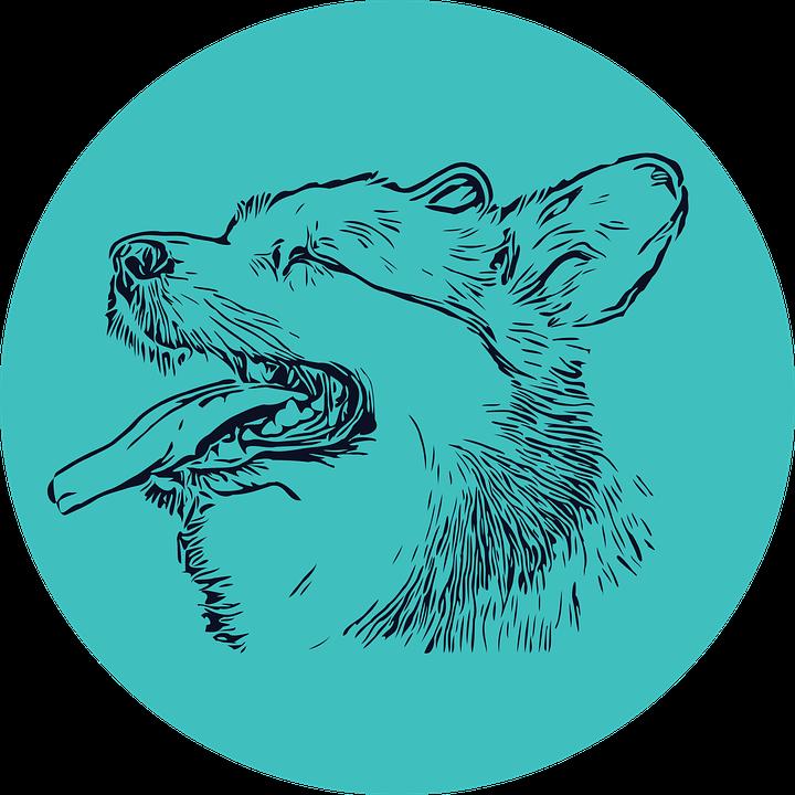 Dog, Sketch, Animal, Corgi, Puppy, Welsh Corgi, Pet