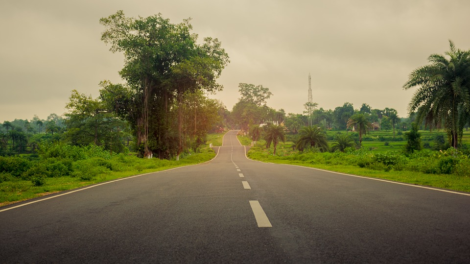 Road, Green, Sky, Tree, Black, White, West, Bengal