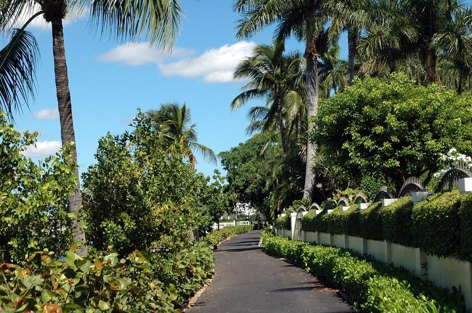 West Palm Beach, Florida, Path, Beach, Palm, West, Usa