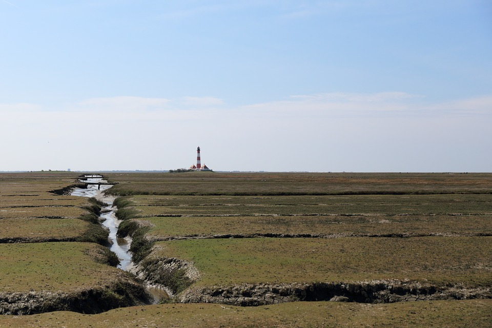 Lighthouse, Westerhever, Salt Meadow