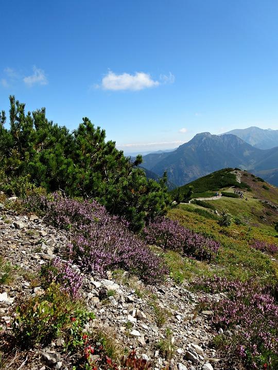 Western Tatras, Mountains, Landscape, Nature