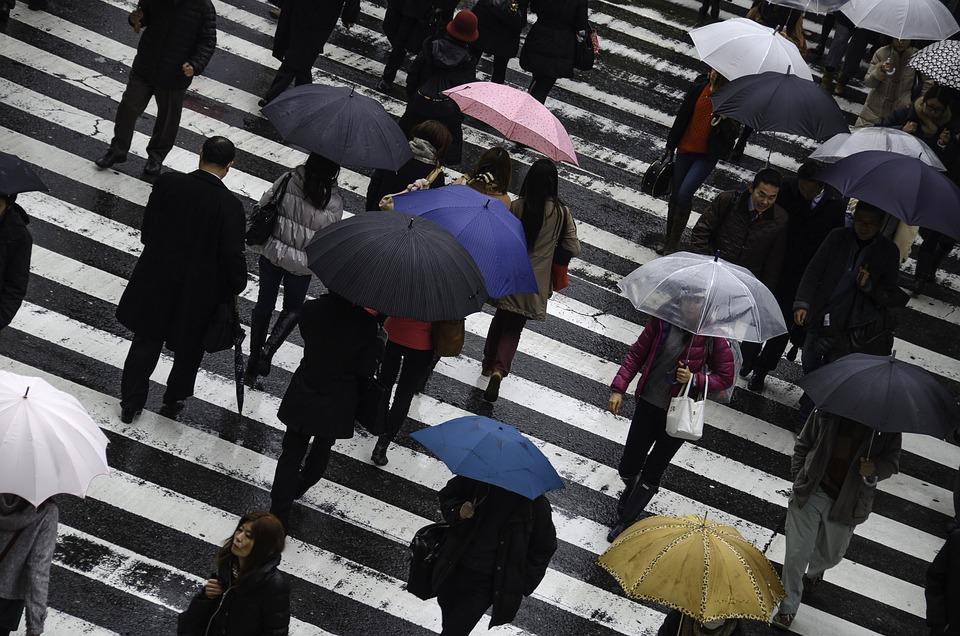 People, Rainy, Busy, Japan, Osaka, Umbrella, Wet