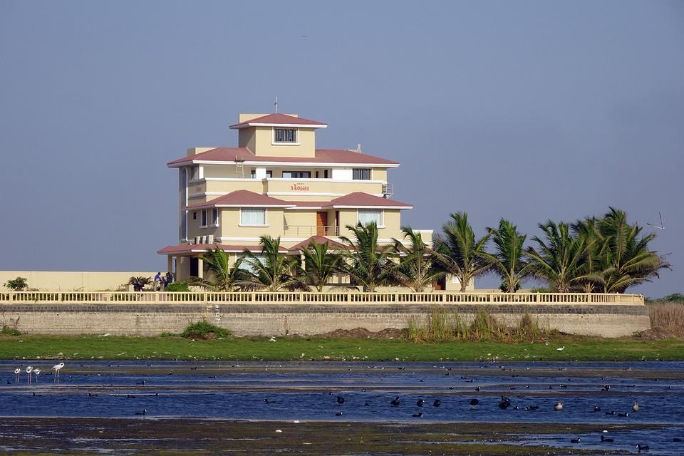Mansion, Bungalow, House, Waterside, Wetland, Idyllic