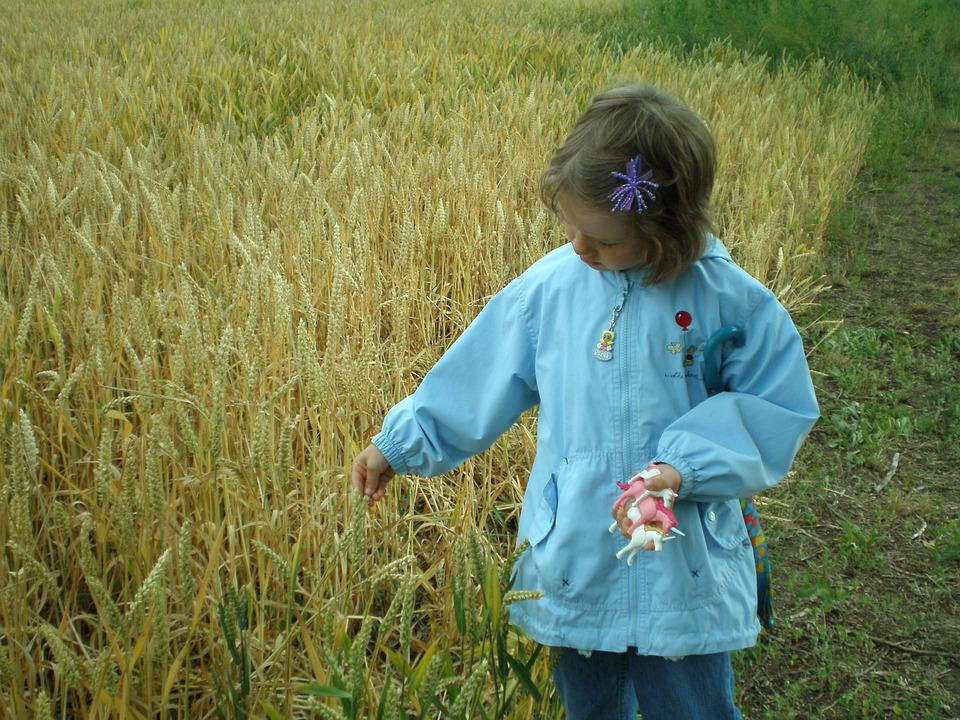 Child, Field, Cereals, Away, Wheat, Wheat Field, Arable