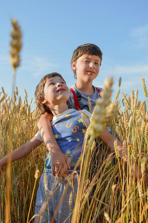 Kids, Smile, Field, Wheat, Nature