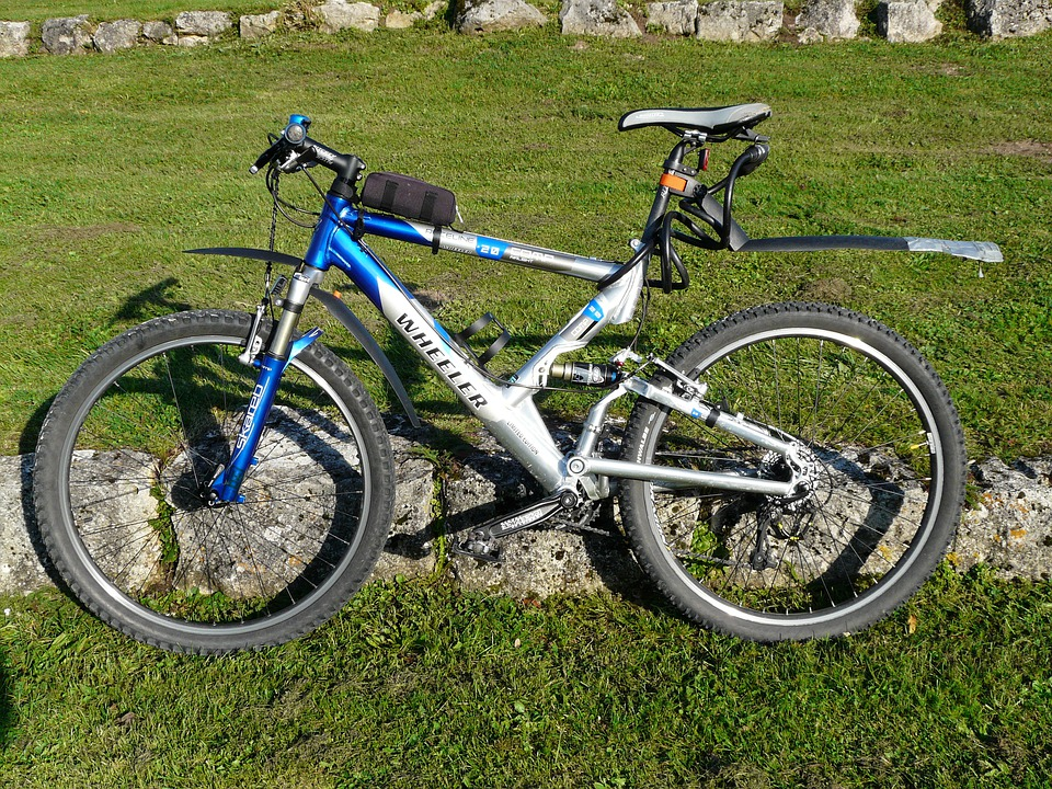 Bike, Mountain Bike, Transport, Wheel, Cycling, Meadow