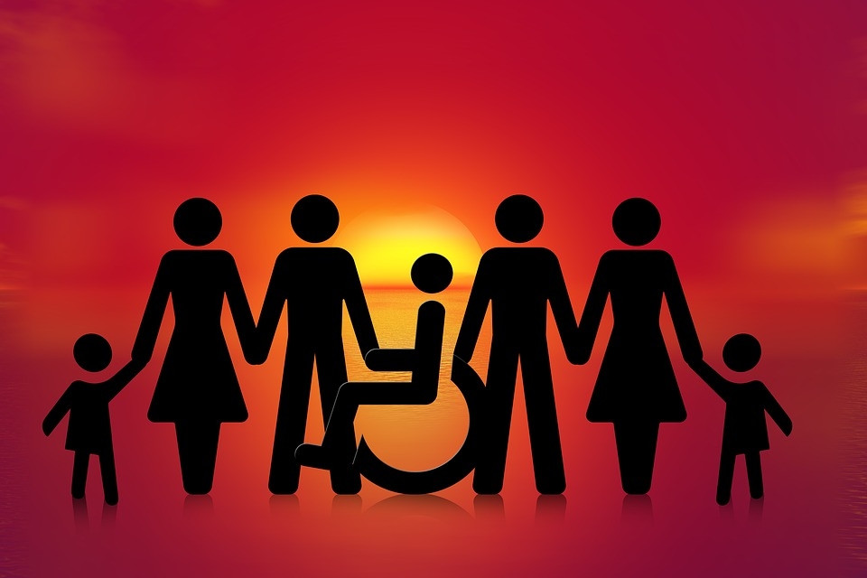 Inclusion, Group, Wheelchair, Wheelchair Users