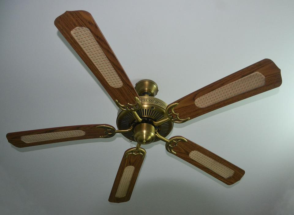 Ceiling Fan, Fan, Whirling, Ceiling, Interior, Air
