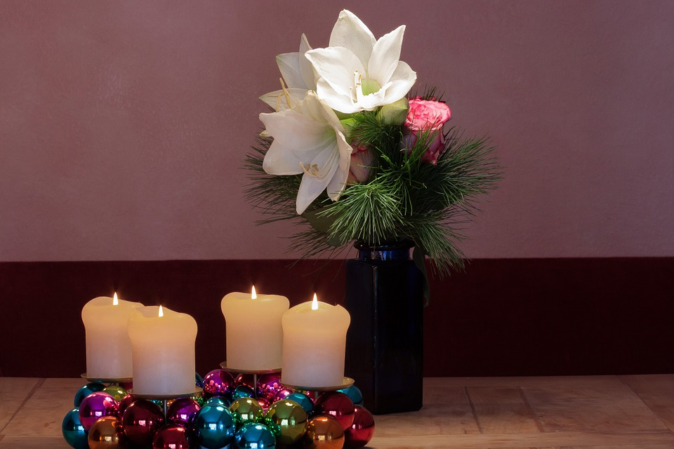 Advent Wreath, Amaryllis, White, Flowers, Flower, Plant