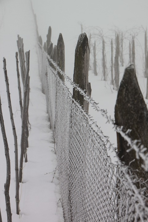 Cold, Fence, Frozen, Iron, White, Wire, Winter