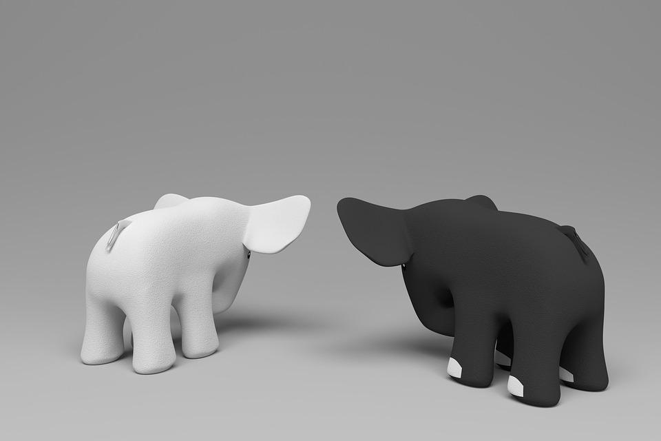 Elephants, White Elephant, Black Elephant
