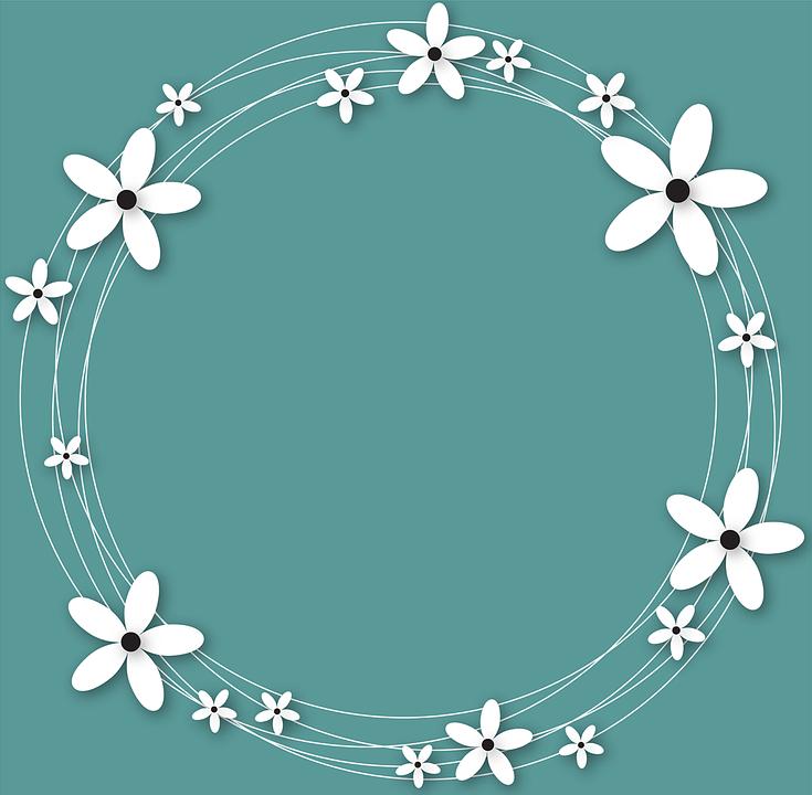 Flowers, Plants, White Flower, Blue, White Flowers