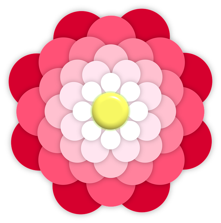 Flower, Ornament, Pink, Red, White, Yellow, Center