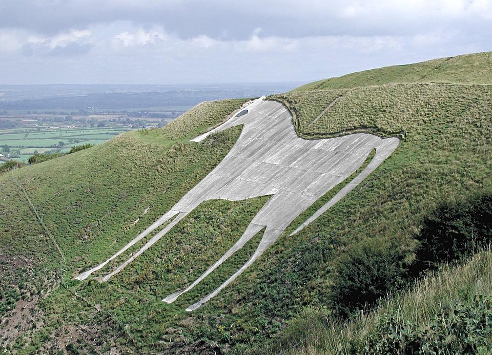 Horse, Landscape, England, White Horse Hill