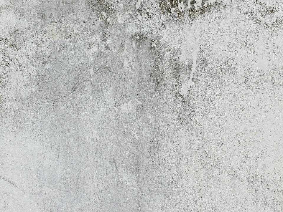 Free Photo White Mortar Crack Aged Texture Black Gray Wall Max Pixel