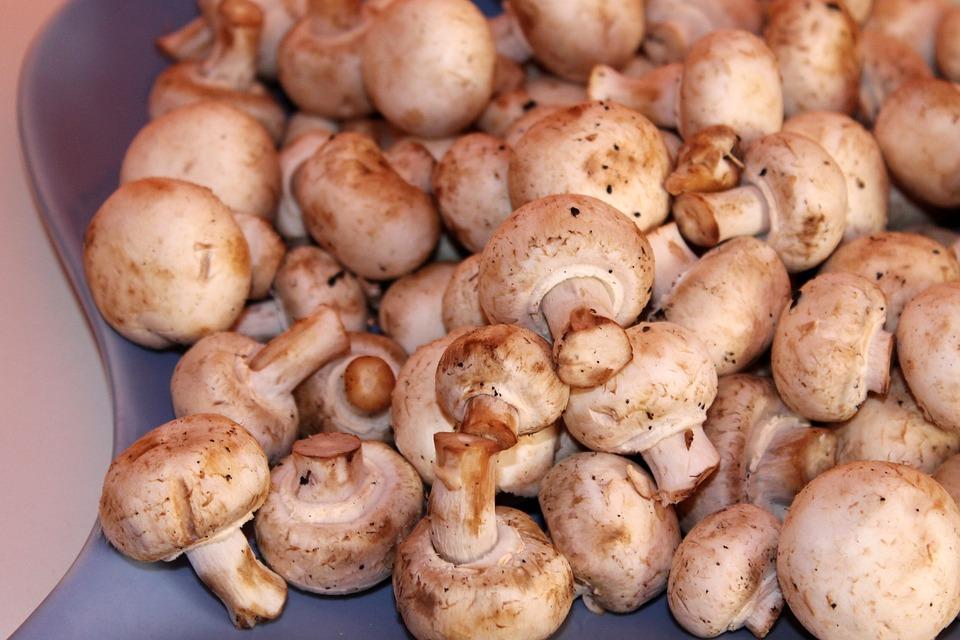 Mushrooms, White Mushroom