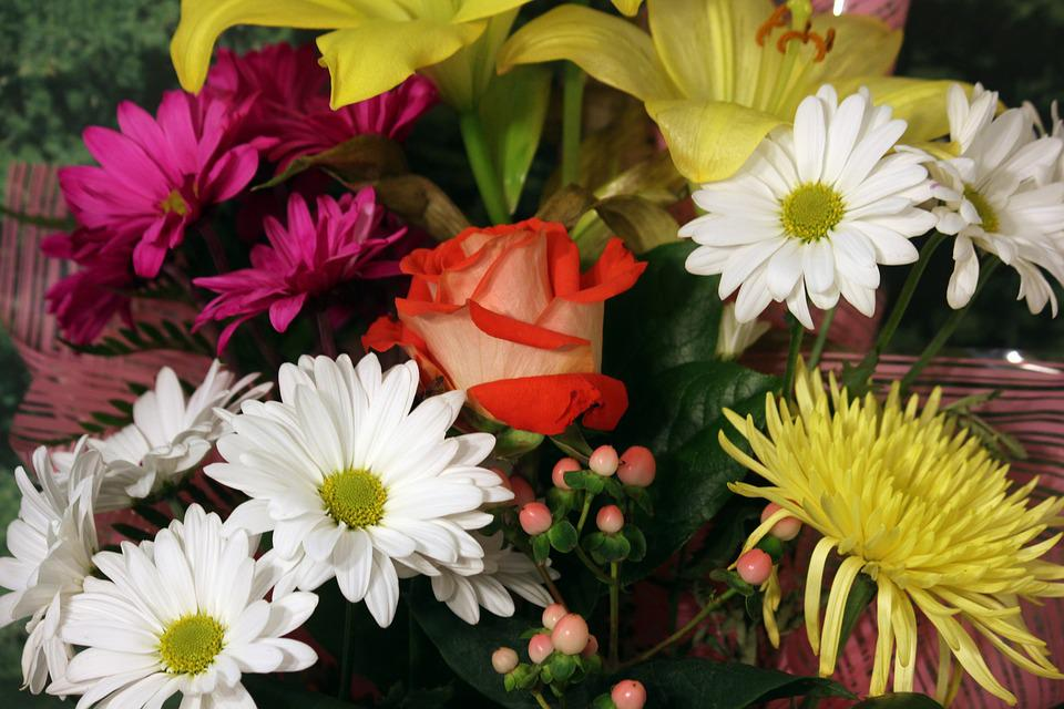 Free photo White Red Yellow Daisy Flower Bouquet Rose Pink - Max Pixel