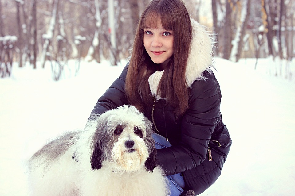 Winter, Snow, Dog, White, Girl With Dog