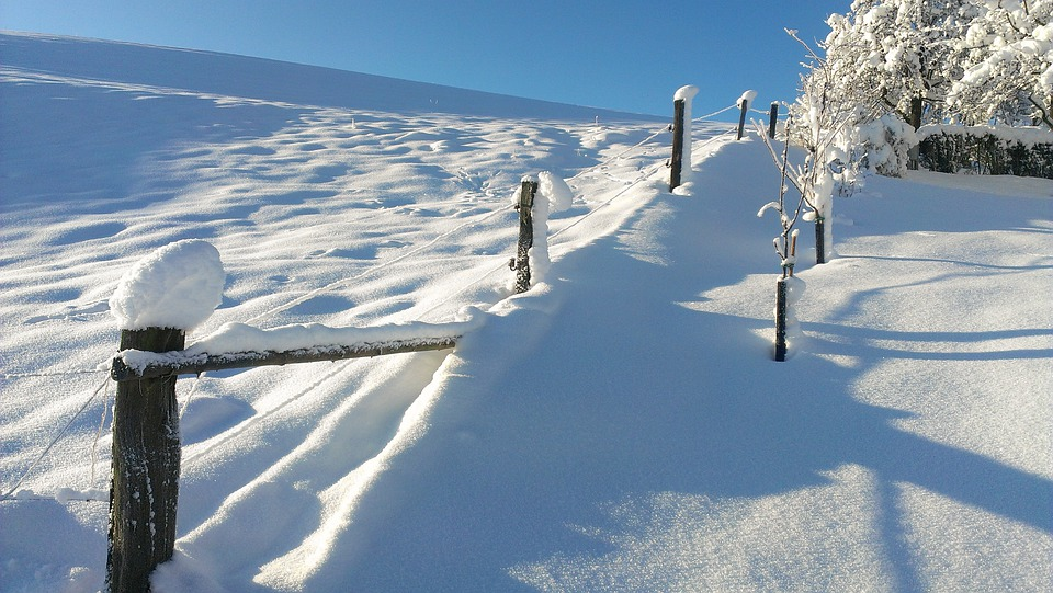 Snow, Landscape, Winter Blast, Fence, Cold, Icy, White