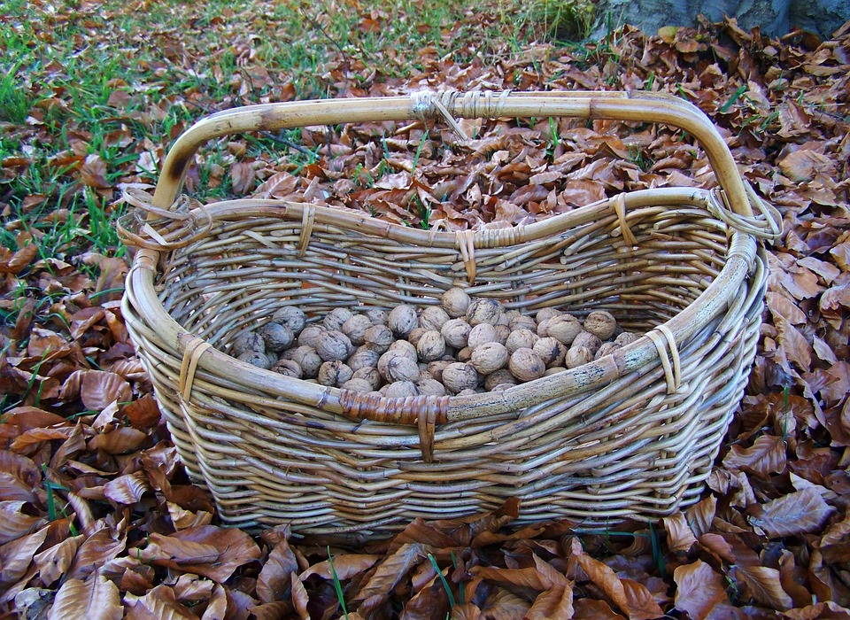 Basket, Wicker Basket