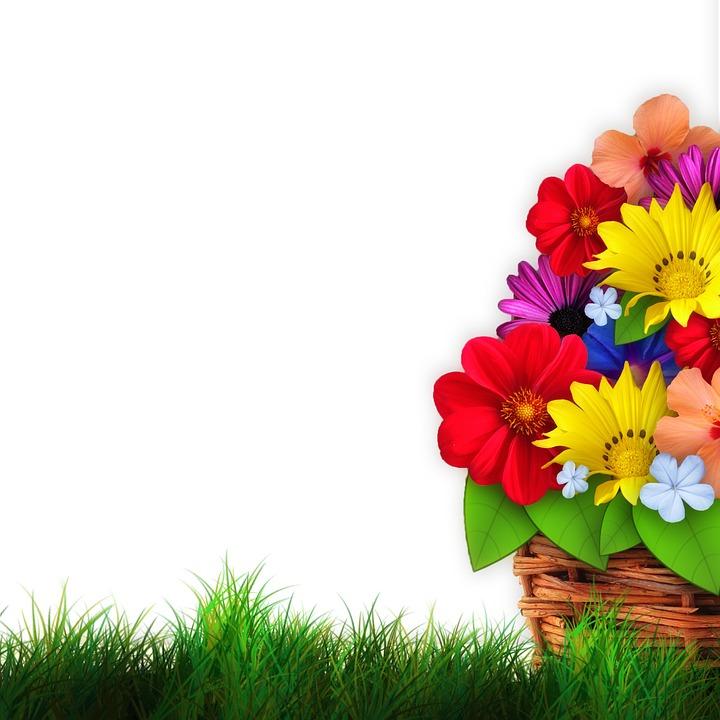 Basket, Wicker Basket, Meadow, Grass, Flowers, Collage
