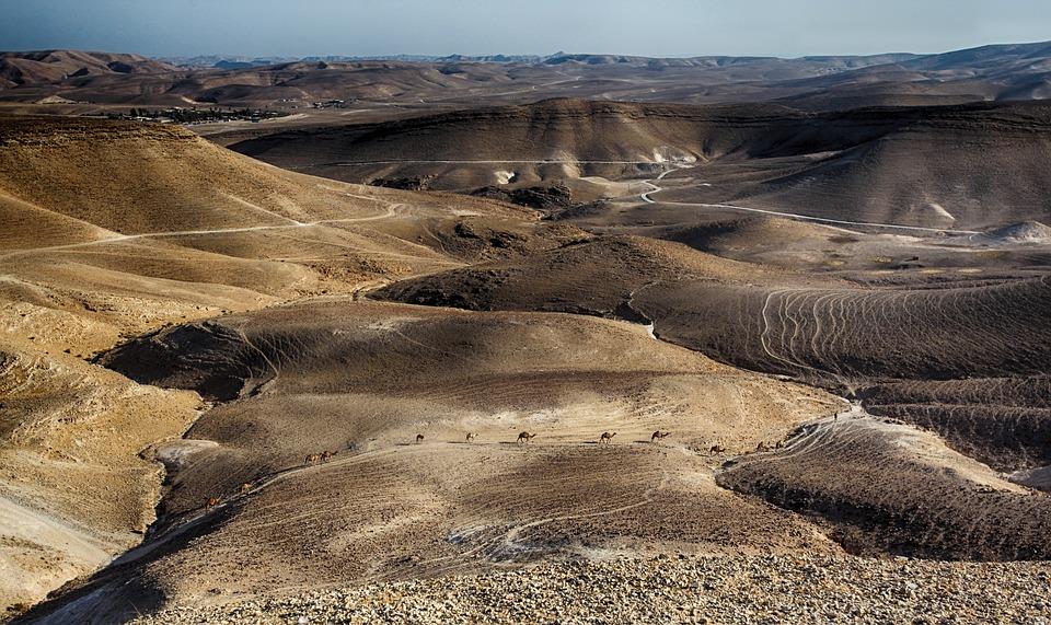 Dead Sea, Timna, Red, Arava, Wide, Brown, Canyon, Cliff