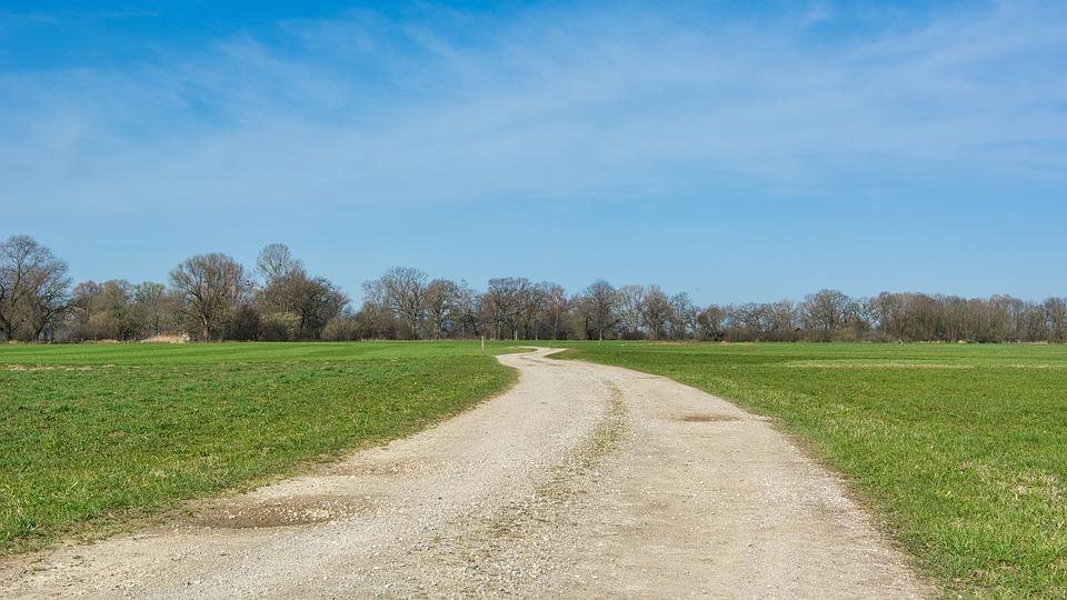 Lane, Away, Nature, Meadow, Field, Wide, Spring