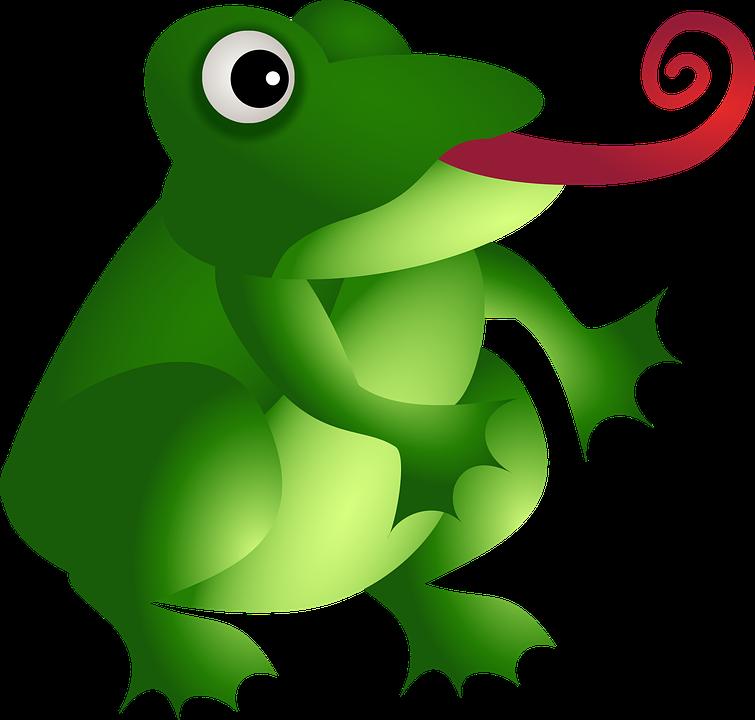 Frog, Amphibian, Green, Animal, Wild, Wildlife, Tongue