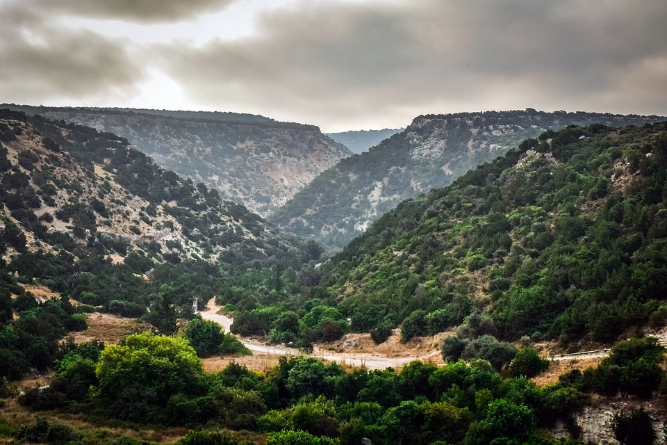 Cyprus, Akamas, Avakas Gorge, Gorge, Nature, Wild