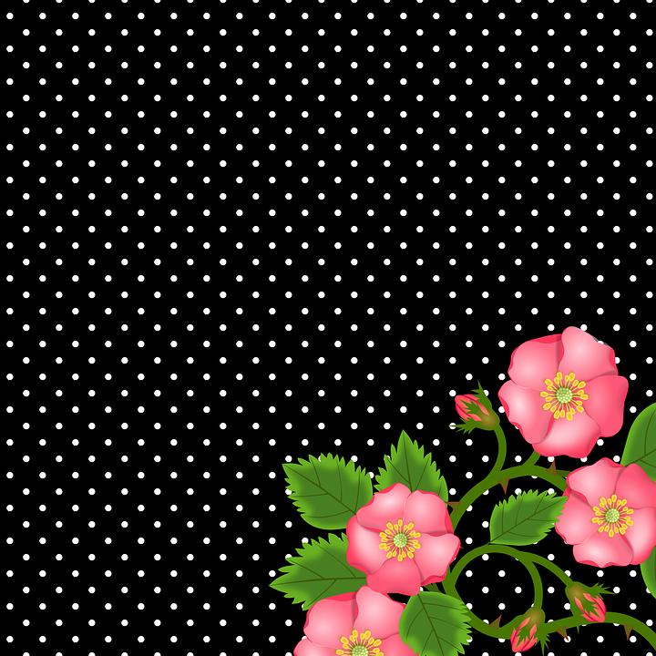 Rose, Ranke, Flowers, Bud, Bloom, Decoration, Wild Rose