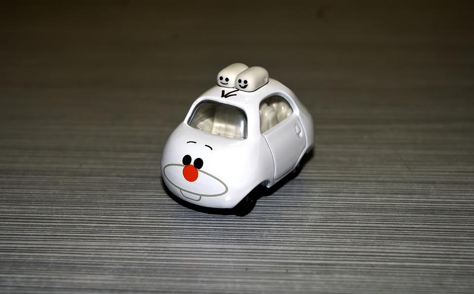 White Bunny Car, Wild, Rabbit, Animal, Car, White