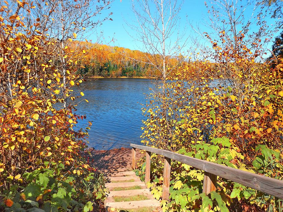 Autumn, Lake, Wilderness, Nature, Landscape, Staircase