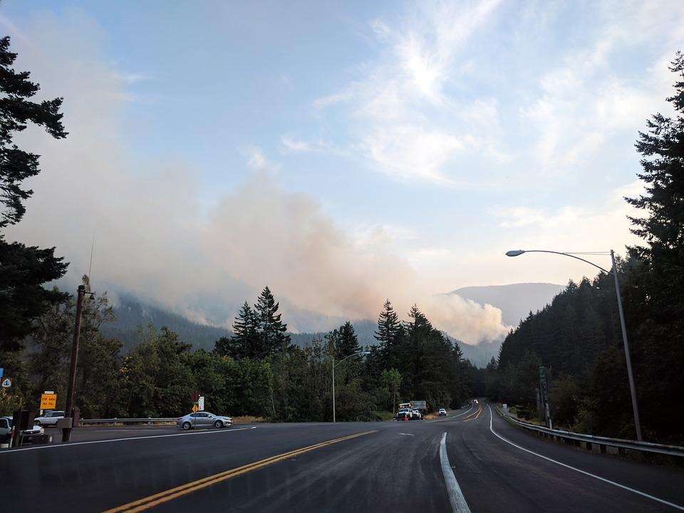 Eagle Creek Fire, Forest Fire, Wildfire, Oregon