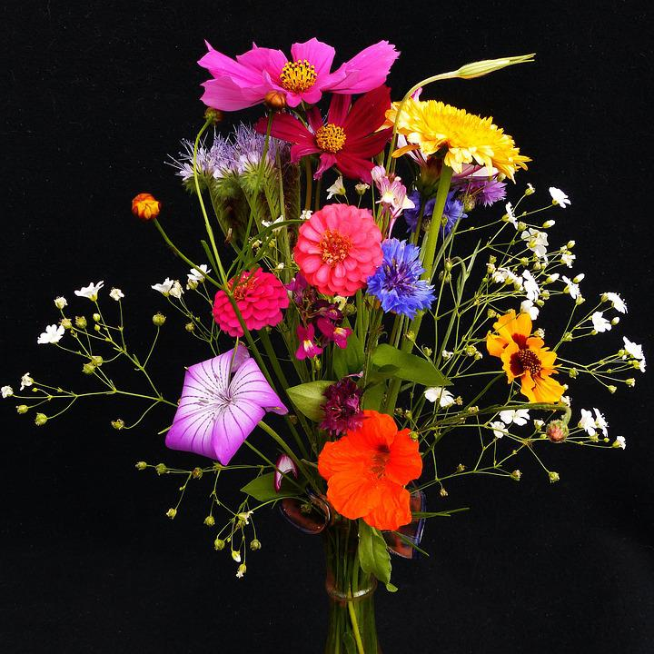 Birthday Bouquet, Wildflowers, Pointed Bouquet