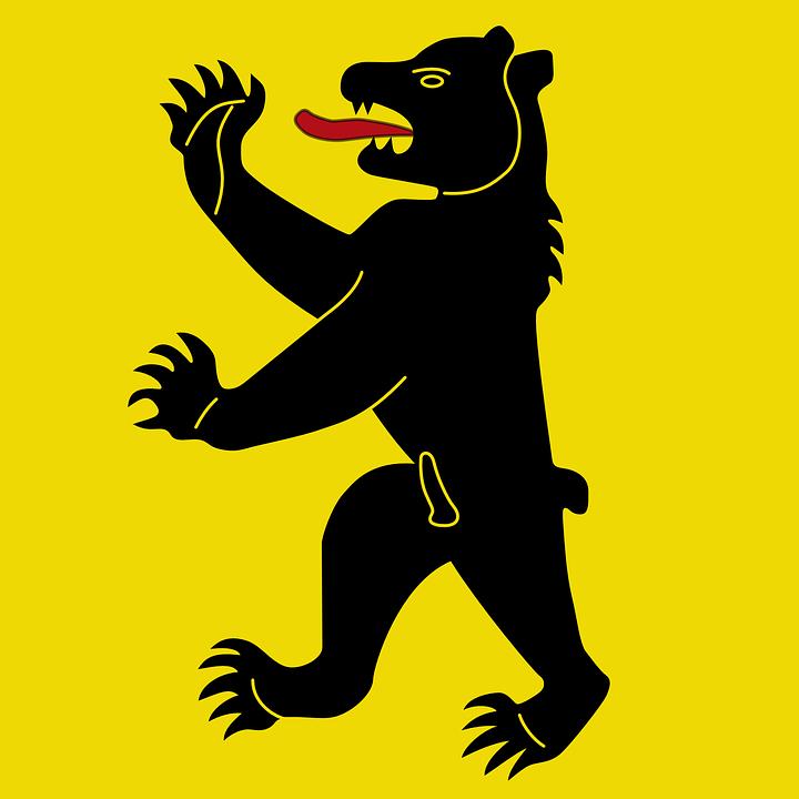 Bear, Coat, Arms, Claws, Wildlife, Ursus